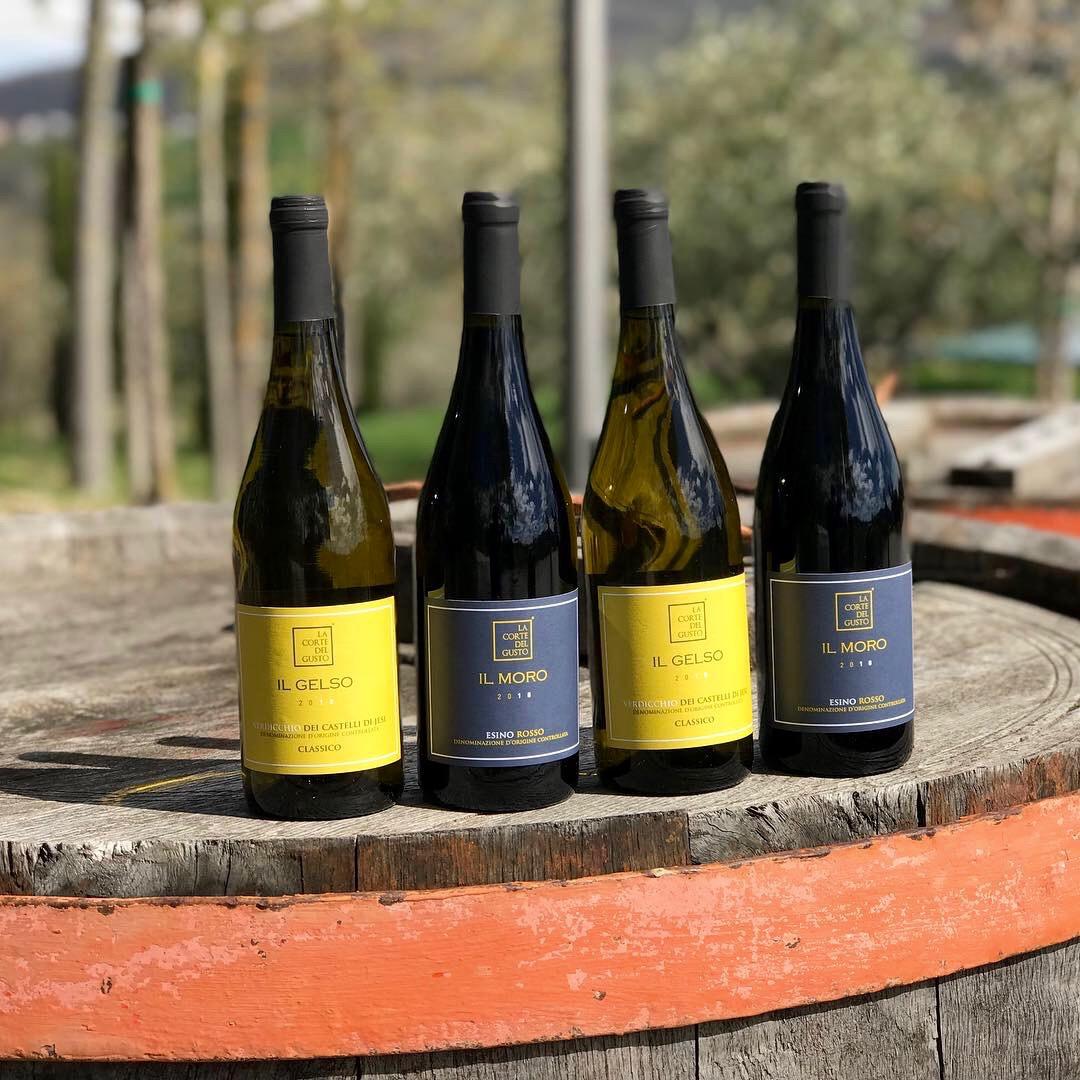 Il Gelso and Il Moro wines La Corte del Gusto Winery